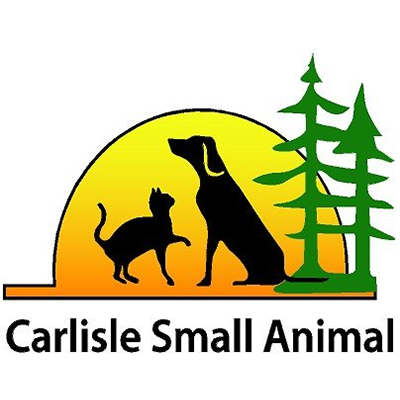 2019 sponsors carlisle sm animal